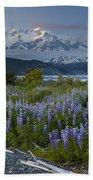 Lupine And Mount Elias Beach Towel