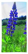 Lupine Flower Beach Towel