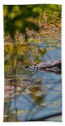 Lurking Gator Beach Towel