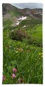 Lush Colorado Summer Landscape Beach Towel