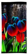 Lustrous Tulips Beach Towel