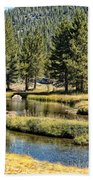 Lyell Canyon Beach Towel