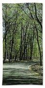 M119 Tunnel Of Trees Michigan Beach Towel