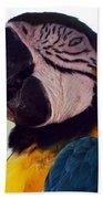 Macaw Head Study Beach Towel