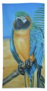 Macaw On A Limb Beach Towel