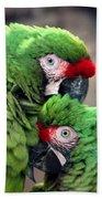 Macaws In Love Beach Sheet