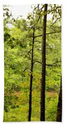 Magic Of The Golden Forest Beach Towel