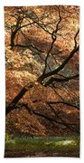 Magnificent Autumn Beach Towel by Anne Gilbert