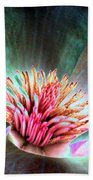 Magnolia Flower - Photopower 1841 Beach Towel