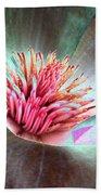 Magnolia Flower - Photopower 1844 Beach Towel