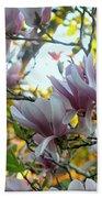 Magnolia Maidens In A Border Beach Towel