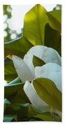 Magnolia Pair Beach Towel