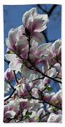 Magnolia Twig Beach Towel
