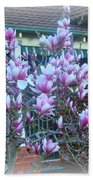 Magnolias At Home Beach Towel