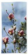 Magnolias In Bud Beach Towel