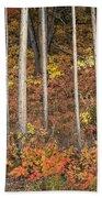 Majestic Autumn In The Grand Tetons Beach Towel