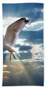 Majestic Bird Against Sunset Sky Beach Towel