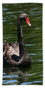 Majestic Black Swan Beach Towel