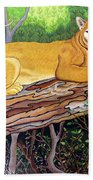 Majestic Hand Embroidery Beach Towel