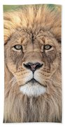 Majestic King Beach Towel