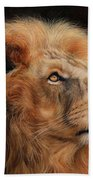 Majestic Lion Beach Towel by David Stribbling