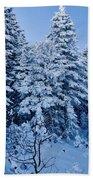 Majestic Winter Wonderland Beach Towel