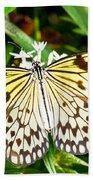 Malabar Tree Nymph Butterfly Beach Towel