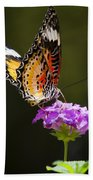 Malay Lacewing On A Flower  Beach Towel