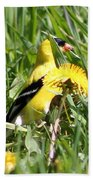 Male American Goldfinch Camouflage Beach Towel