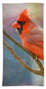 Male Cardinal - Colorful Perch Beach Towel