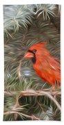 Male Cardinal In Spruce Tree Beach Towel