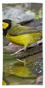 Male Hooded Warbler Beach Towel