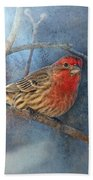 Male House Finch With Blue Texture Beach Towel
