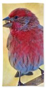 Male Housefinch - Digital Paint Beach Towel