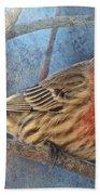 Male Housefinch Close View Beach Towel