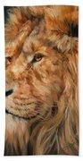 Male Lion Beach Towel by David Stribbling