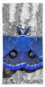 Male Moth - Brilliant Blue Beach Towel