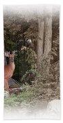 Male Whitetail Deer Beach Towel