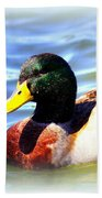 Mallard - 3000-l-012- Beach Towel