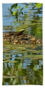 Mallard Mom And The Kids Beach Towel