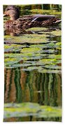 Mallard Pond Beach Towel