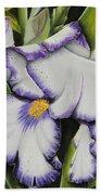 Mama's Favorite Iris Beach Towel