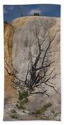 Mammoth Formation  #0290 Beach Towel