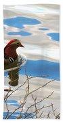 Mandarin Duck Beach Towel