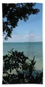 Mangrove Beach Towel