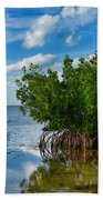 Mangrove Beach Towel