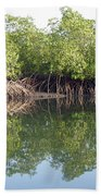 Mangrove Refelections Beach Towel