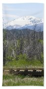 Lake Manitou Sp Woodland Park Co Beach Towel