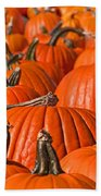 Many Pumpkins In A Row Art Prints Beach Towel