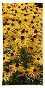 Many Yellow Blooms Beach Towel